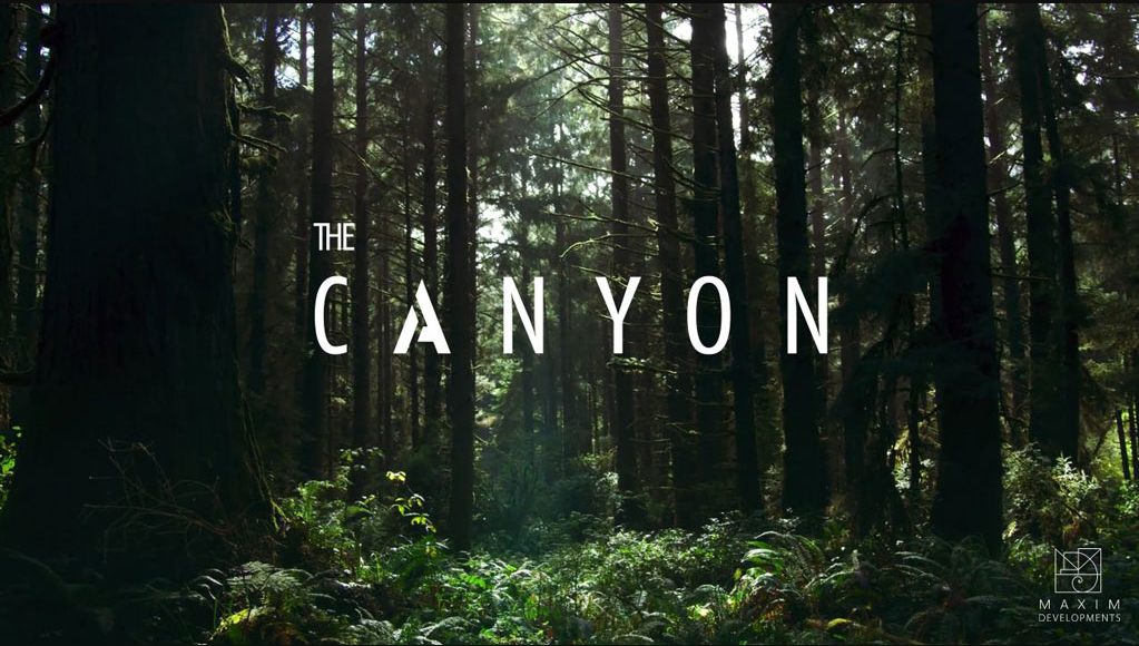 Information about The Canyon Project