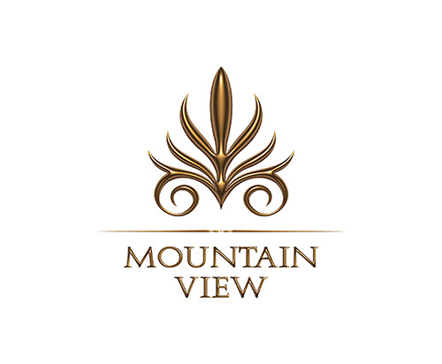 Mountain View Developments