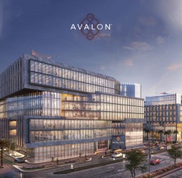 Office for Sale in Avalon Mall