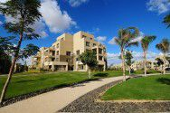 Apartment 350m in Palm Parks