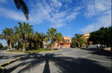 Palm Hills 6 October